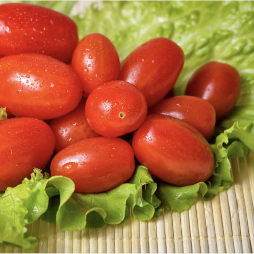Green Salad Special